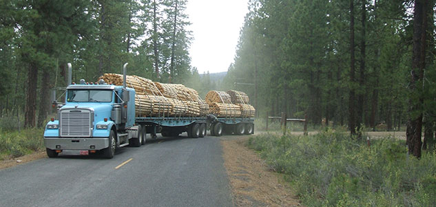 Local-Economies-Log-Truck
