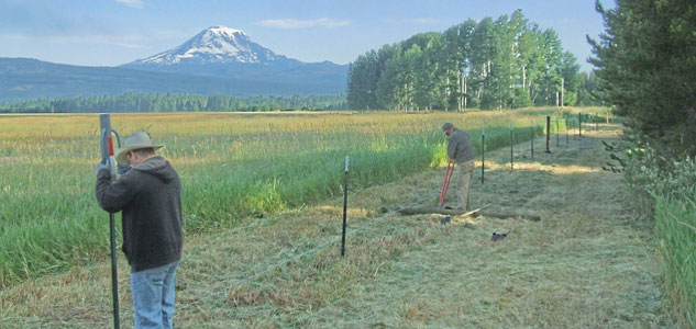 Stewardship-Fence-Install