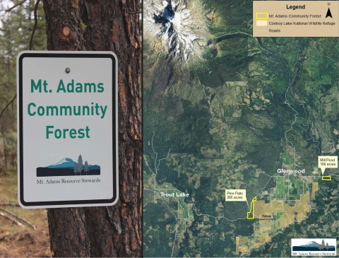 Community Forest Banner